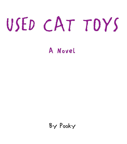 USED-CAT-TOYS