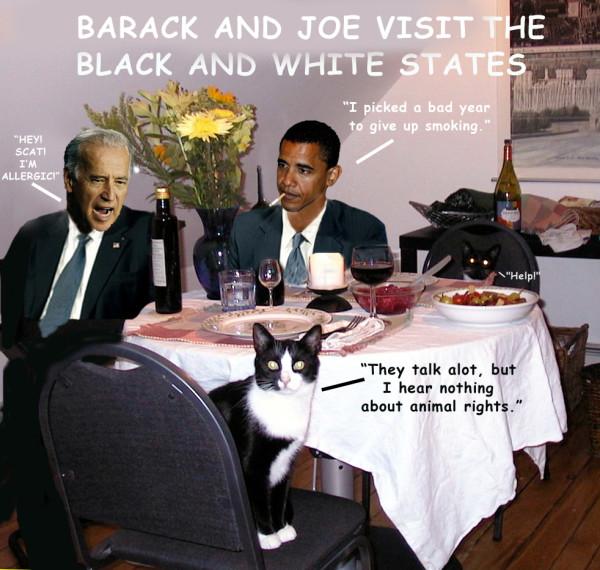 Barack & Joe